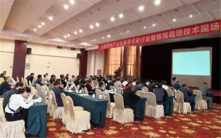 云南核桃产业发展培训研讨会在玉溪华宁举办