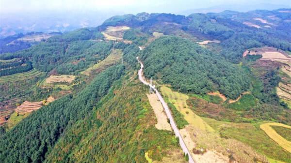 中国绿化基金会今年前五月筹集资金2.15亿元