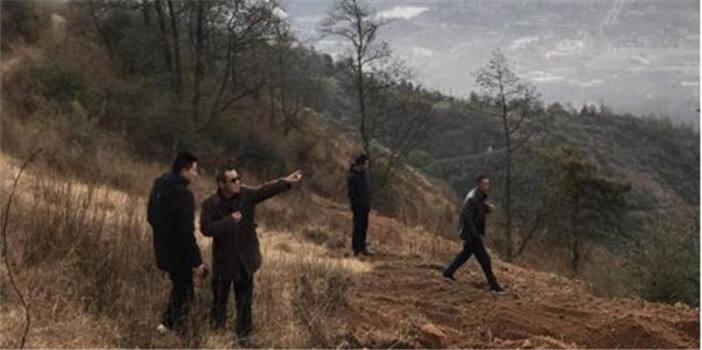 安宁林草局检查廊道面山难造林地生态恢复工程