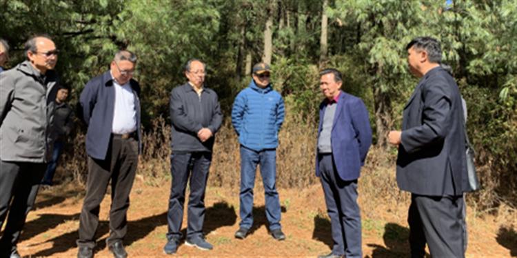 国家林草局发改司司长刘拓到昆调研森林康养试点项目