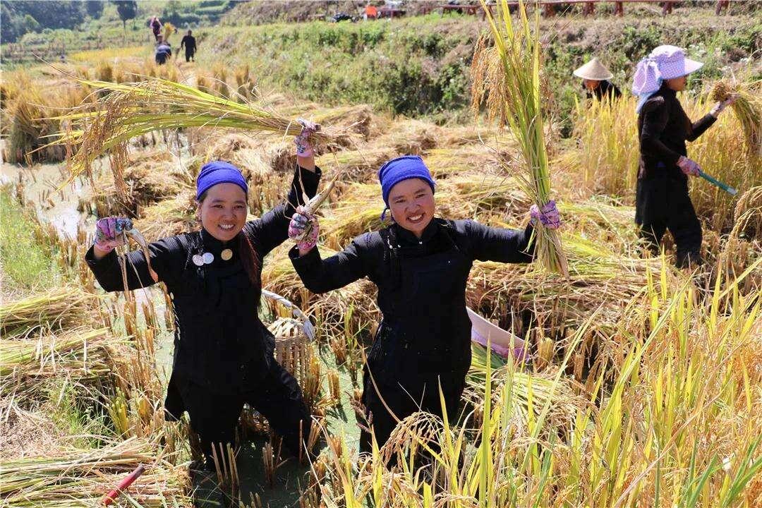 云南唯一!这个地方入选国际旅游减贫案例