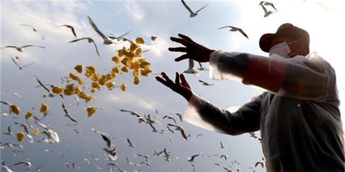 """保护风景守护健康 昆明市林草局多举措管控好""""野生动物王国"""""""