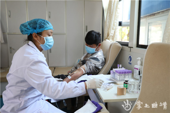 """罗平:献血战""""疫""""护佑生命"""