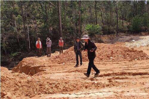党建引领 安宁市林草局推进森林核查整改