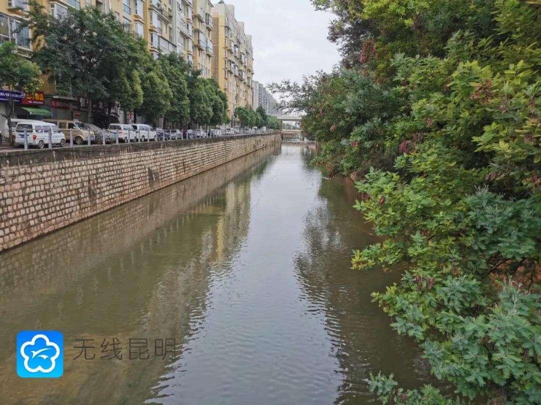达标!官渡区7条主要入湖河道水质均在IV类以上